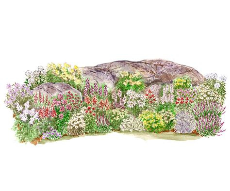 rock garden plans blooming rock garden plan