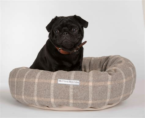 bed pugs top dog beds for pugs