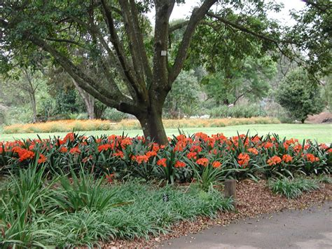 National Botanical Gardens Kwazulu Natal National Botanical Garden