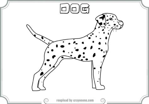 dalmatian dog coloring page coloring home