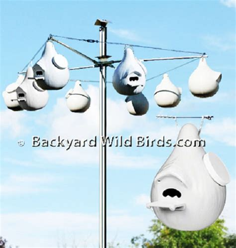 purple martin excluder gourd houses