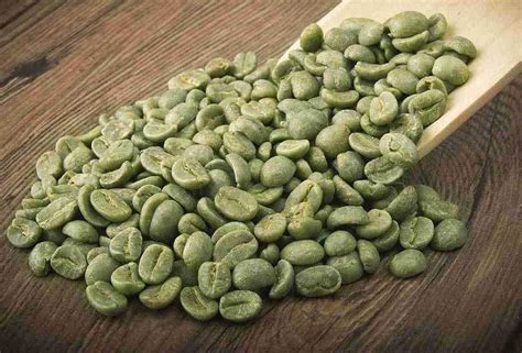 Coffe Green green coffee svetol 50 cga for burning weight loss