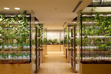 in door indoor underground urban farms are growing