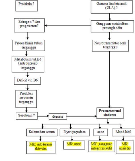 format askep komunitas pdf perawat hati askep gangguan menstruasi