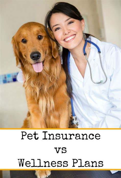 puppy insurance plans pet insurance vs wellness plans