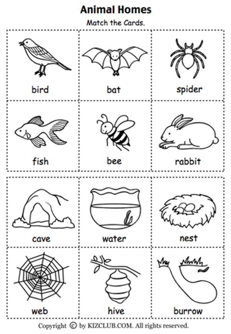 ocean animals matching cards 171 preschool and homeschool here s a set of cards for matching animals to their homes