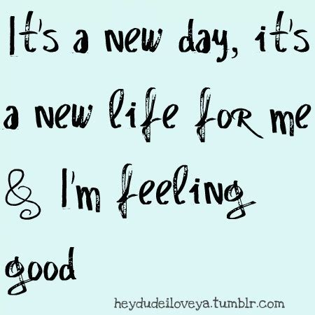 feeling good i am feeling good quotes quotesgram