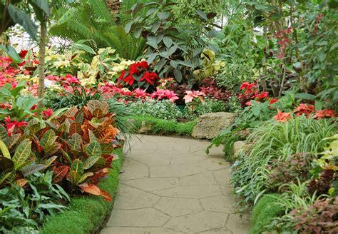 jardin tropical cr 233 er et am 233 nager un jardin tropical paysagiste info
