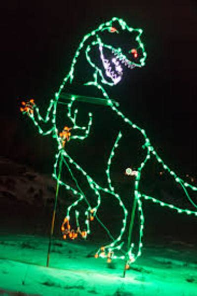 light up christmas with a trip to the zoo petslady com