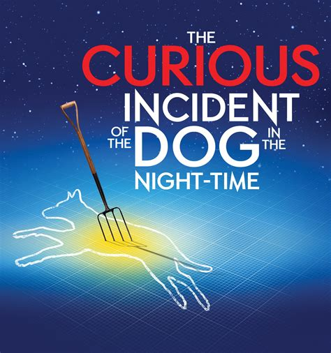 The Curious Incident Of The In The Nighttime Essay by Christopher Boone Crimson Cocoon