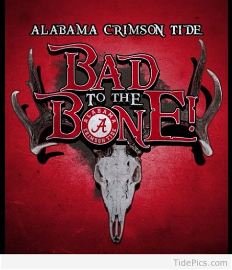 bad to the bone alabama crimson tide pictures tidepics com