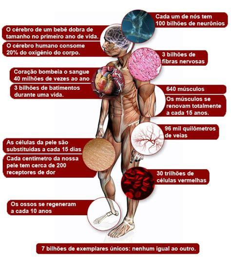 lade corpo neuroci 234 ncias em benef 237 cio da educa 231 227 o as infinitas