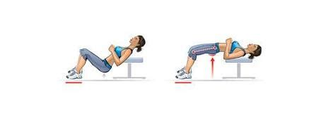 hip thrust bench 5 powerful butt exercises to get in shape at home