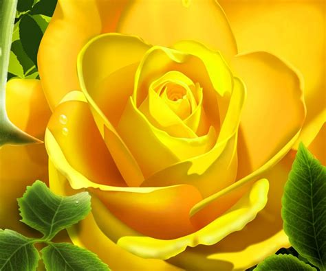 flower wallpaper hd for android yellow flower android wallpapers 960x800 mobile phone images
