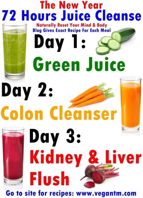 Detox Diet Juice And Food by The New Year 72 Hours Juice Cleanse Recipe Health