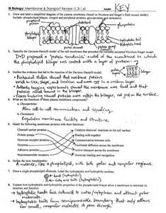 cell membrane coloring worksheet answer key cell membrane worksheet answer key worksheets tutsstar