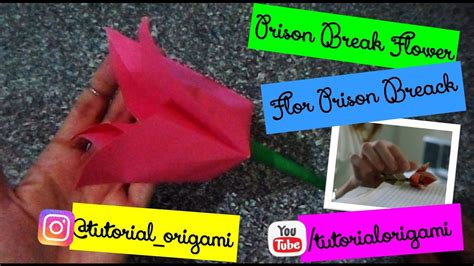 Prison Origami Flower - prison origami flower 28 images origami simple flower