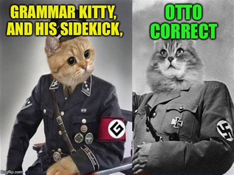 Grammar Nazi Meme - grammar nazi cat meme www imgkid com the image kid has it