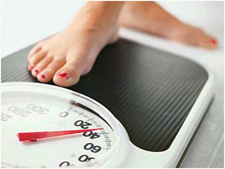 weight management tools helpful weight loss tools for weight management home