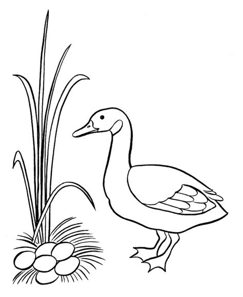 Georgia O Keeffe Coloring Pages Kids Coloring O Keeffe Coloring Pages