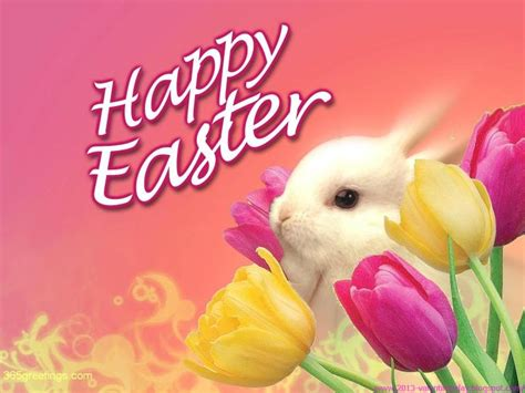 happy easter images photos and pictures 2016