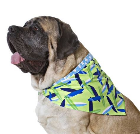 bandanas for dogs designer duds for dogs bandanas