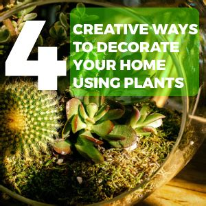 Creative Ways To Decorate Your Home by