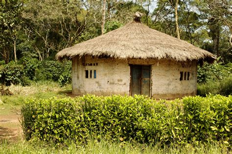 The Architecture Of Traditional House In Africa Bamboo Architecture