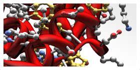 proteinase k promega protein digestion