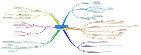 macbeth themes mind map imindmap id 2 blood and cardiovascular infections