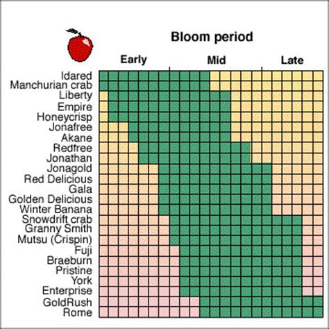 honeycrisp apple tree pollination chart fruit trees