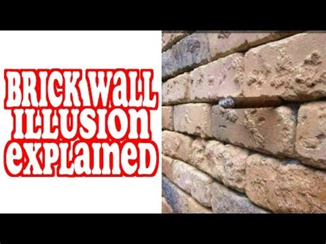 Brick Wall Meme - brick wall illusion explained mully brick wall optical