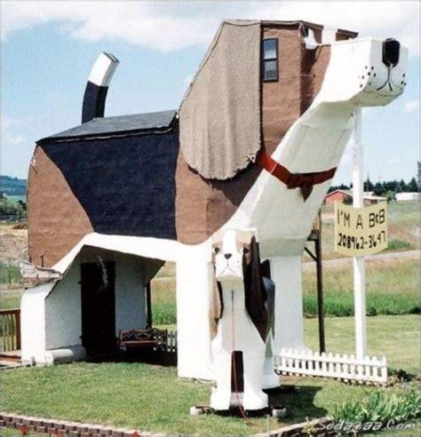 dog shaped house dog shape unconventional house funny pinterest