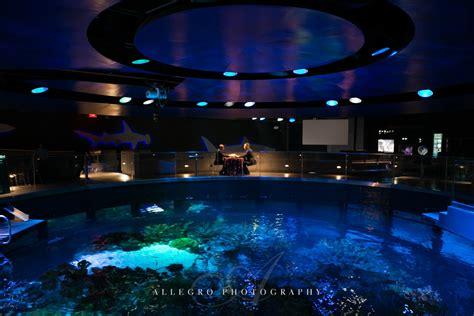 england aquarium wedding craig michael allegro