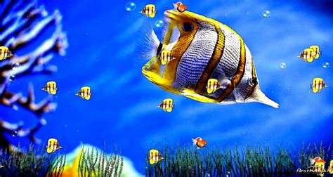 7 Best Animated Of 2010 by Popular Screensavers Animated Pictures To Pin On