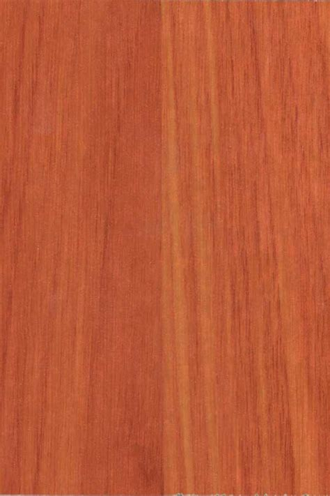 Colors Of Laminate Flooring Welcome To Tiger Floor Manufacturer Of Laminate Flooring New Colors