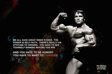 tattoo quotes for bodybuilding 33 best arnold schwarzenegger reference images on