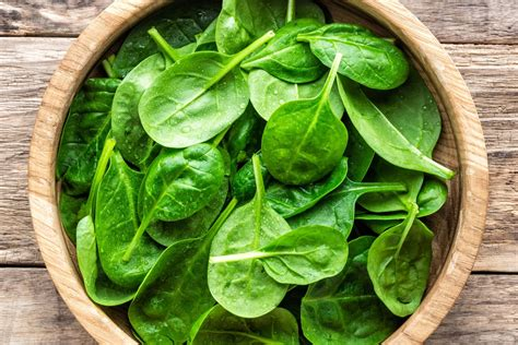 whats  season spinach farm flavor suara insan