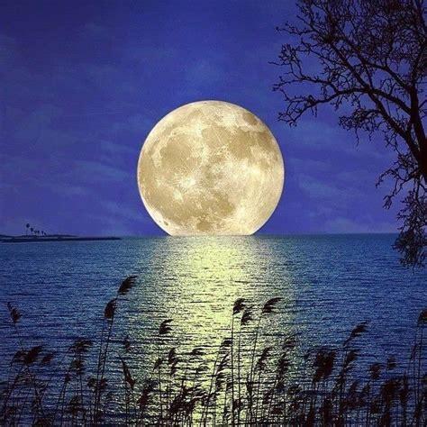 imagenes de lunes hermosas luna llena pinteres