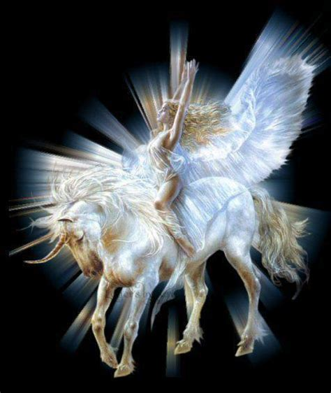 Lovely Pegasus wings and unicorn wings and unicorns