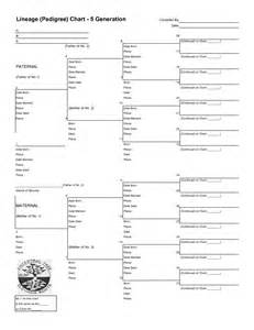 five generation pedigree chart template 12 best images of family tree pedigree chart worksheet 6