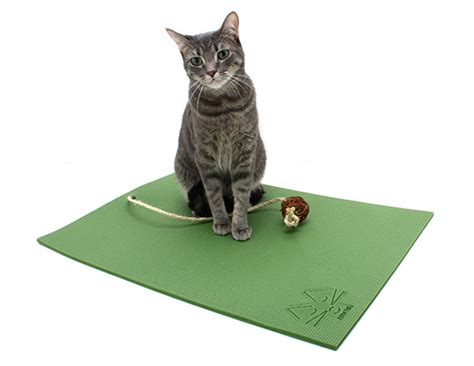 the cat mat for enlightened felines hauspanther