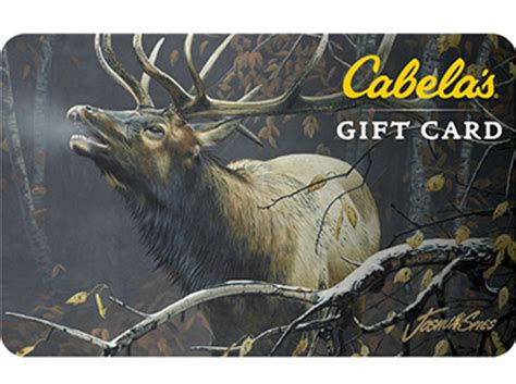 Cabelas Gift Card - let them choose best gift cards for outdoorsy people