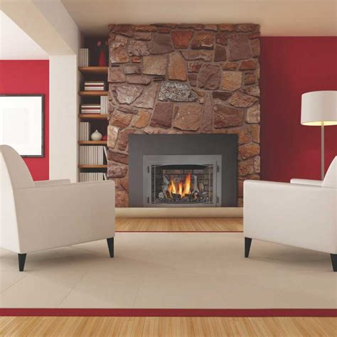 Napoleon Fireplace Insert Reviews by Napoleon Ir3n 1sb Basic Fireplace Insert At Ibuyfireplaces