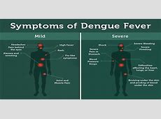 Symptoms and Prevention of Dengue Fever - Assignment Point Infected Mosquito Bites On Children