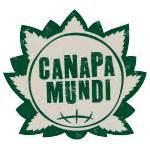 canapé le mans die 5 wichtigsten vorteile cannabis bei alzheimer
