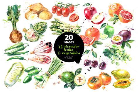 libro watercolour fruit vegetable watercolor fruits vegetables set illustrations on creative market