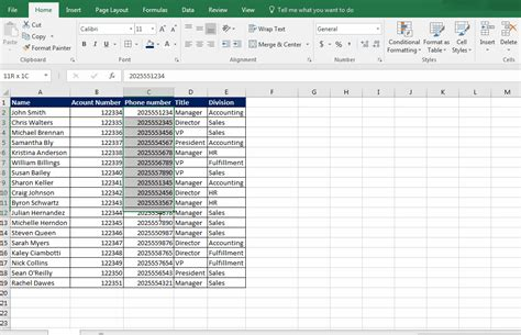 excel format as number excel number formatting special phone numbers learn