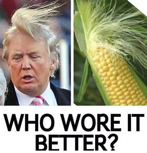 Meme Gallery - best 25 trump meme funny ideas on pinterest donald