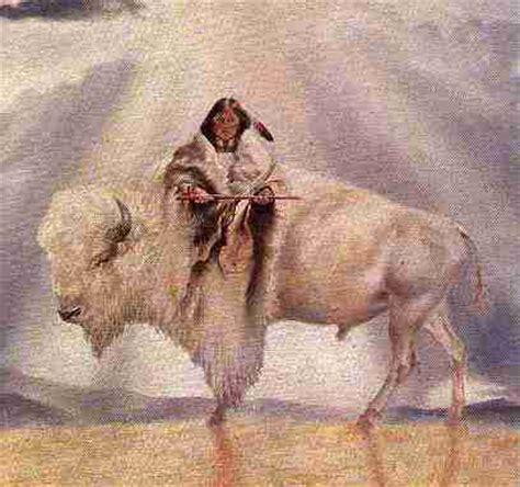 Buffalo Birth Records Birth Of A White Buffalo May 2005